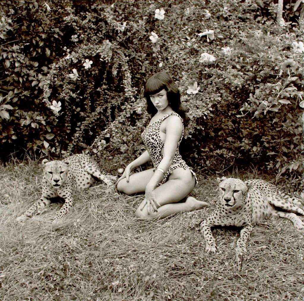 Bettie-w-Cheetahs---Cat-Pose-flat-psd-08314
